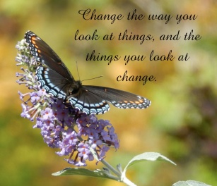 6453013-change-the-way-you-look-at-things-quote